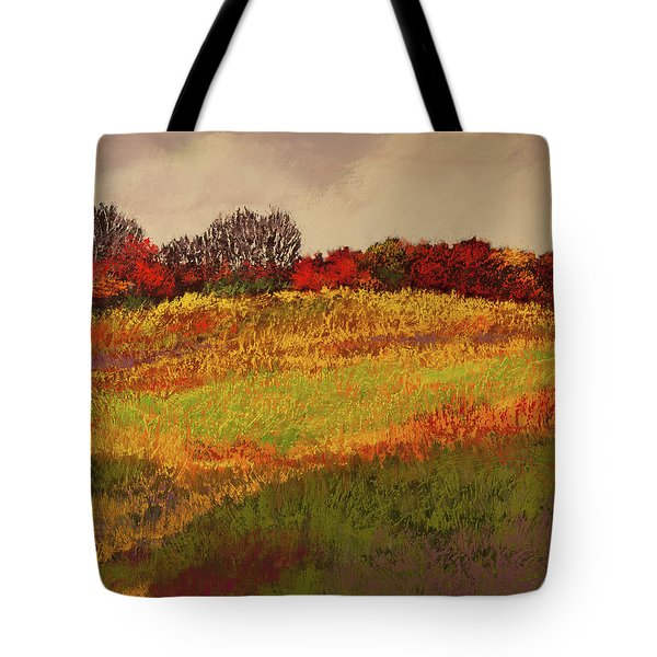 Tote Bag featuring the photograph Approaching Magpie Forest by David Patterson