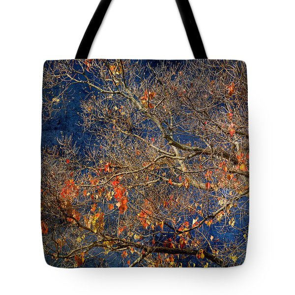 Approaching Winter Tote Bag