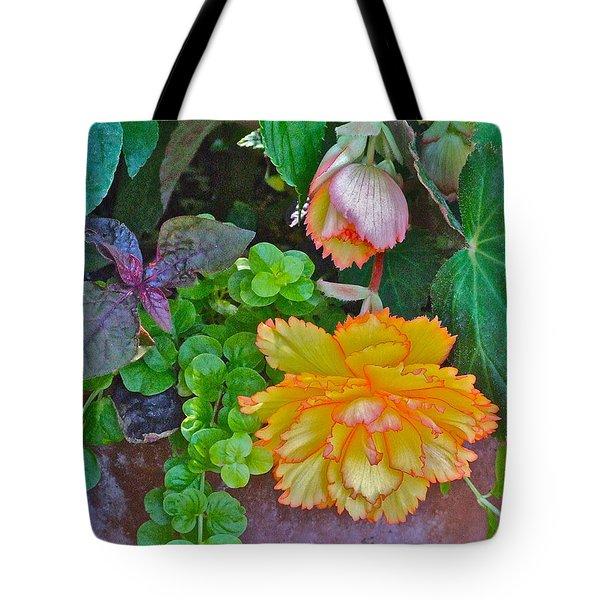 Apricot Begonia 3 Tote Bag