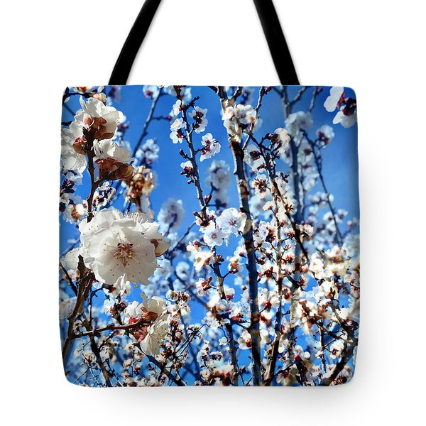 Tote Bag featuring the photograph Apricot Blossoms by Glenn McCarthy Art and Photography