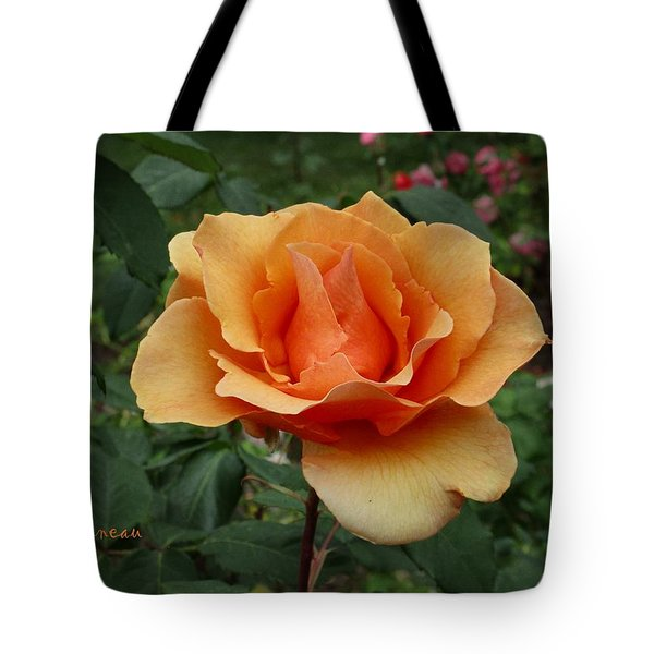 Apricot Rose Tote Bag by Sadie Reneau