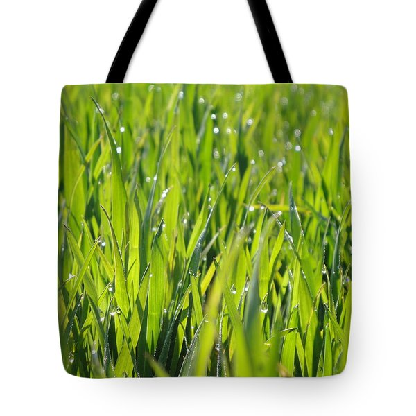 April Dewdrop Fairylights Tote Bag