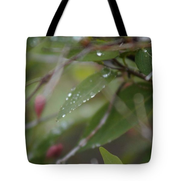 April Showers 1 Tote Bag