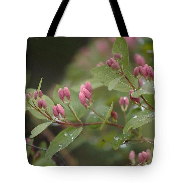 April Showers 4 Tote Bag
