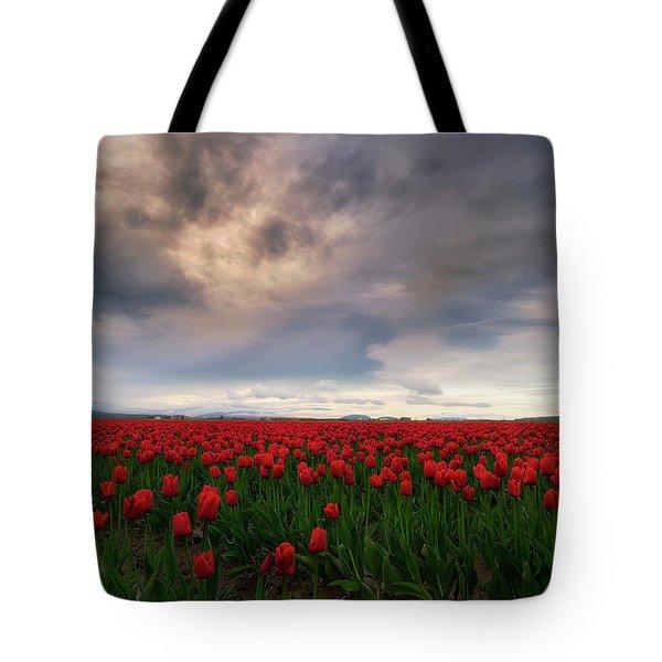 April Showers Tote Bag by Ryan Manuel