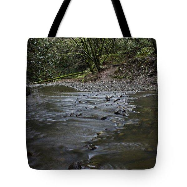 Aptos Creek -- Nisene Marks State Park Tote Bag