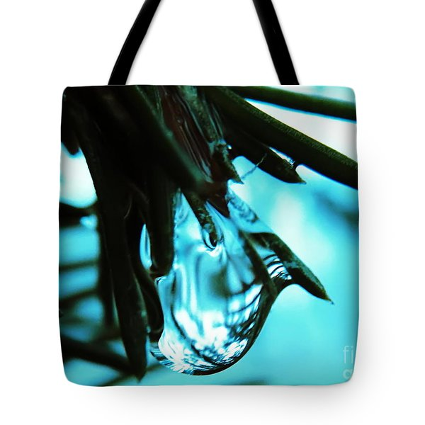 Aqua Tote Bag by Misha Bean