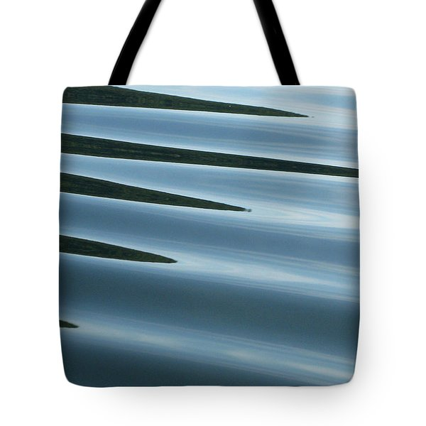 Aquarius Tote Bag by Cathie Douglas