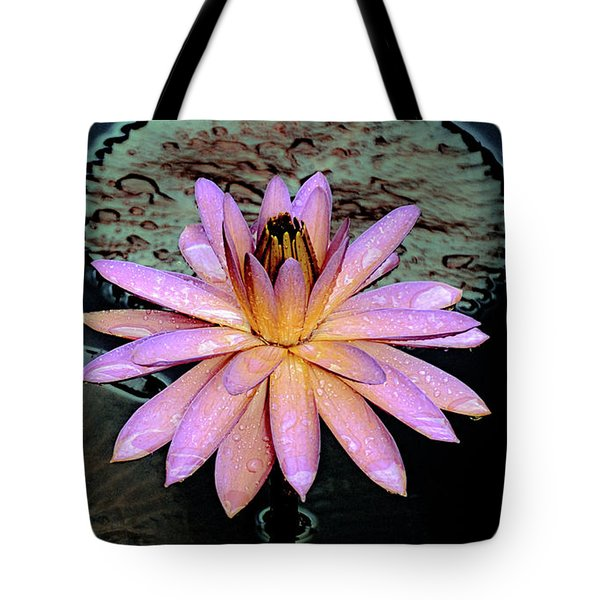 Tote Bag featuring the photograph Aquatic Beauty Night Blooming Water Lily by Julie Palencia