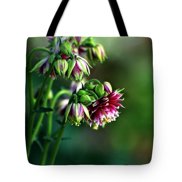 Aquilegia In Red And White Tote Bag