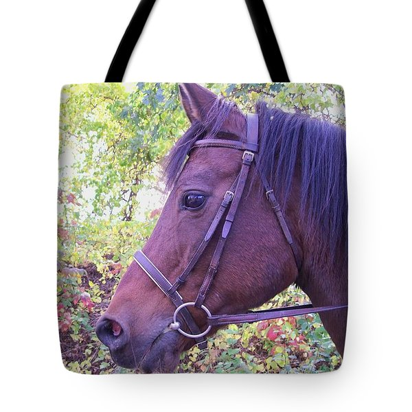 Tote Bag featuring the digital art Arabian Beauty by Barbara S Nickerson