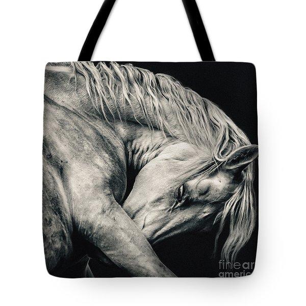 Arabian Beauty White Horse Portrait Tote Bag