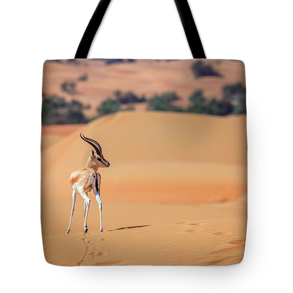 Tote Bag featuring the photograph Arabian Gazelle by Alexey Stiop