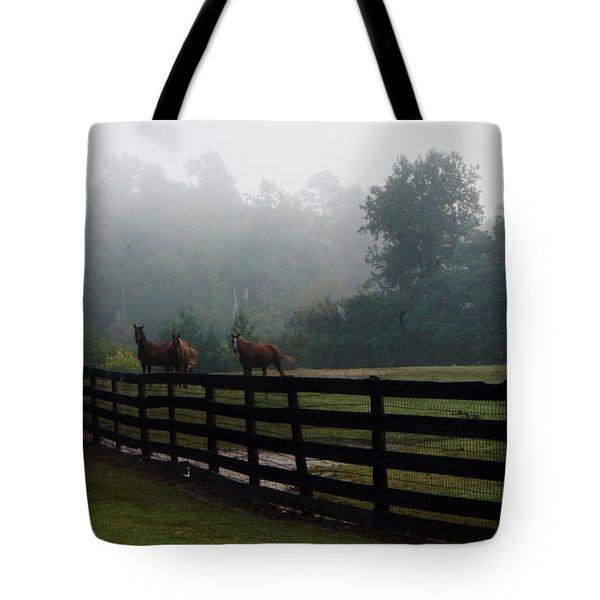 Arabian Horse Landscape Tote Bag