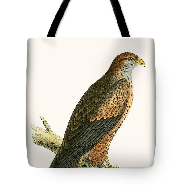 Arabian Kite Tote Bag by English School