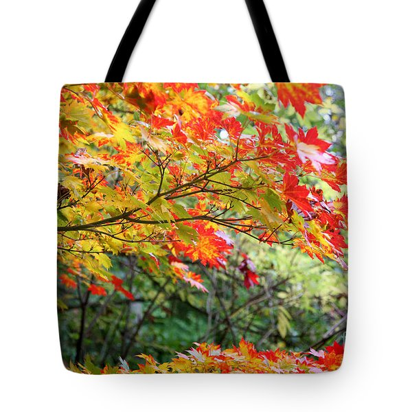 Arboretum Autumn Leaves Tote Bag