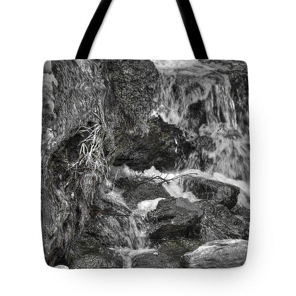 Arboretum Waterfall Bw Tote Bag