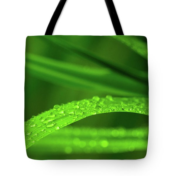 Tote Bag featuring the photograph Arc Of Raindrops by SR Green