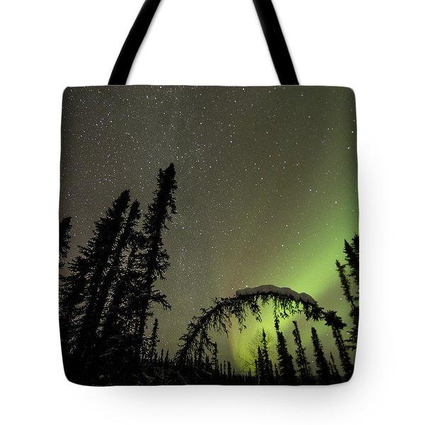 Arched Spruce Aurora Tote Bag