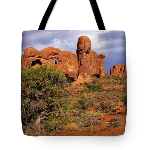 Arches 14 Tote Bag by Marty Koch