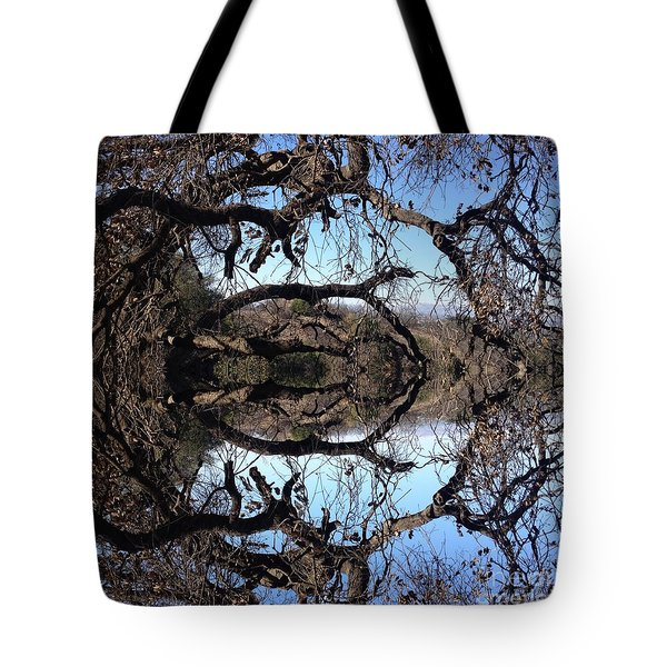 Arches And Circles  Tote Bag by Nora Boghossian