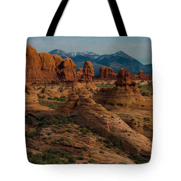 Tote Bag featuring the photograph Arches National Park by Gary Lengyel