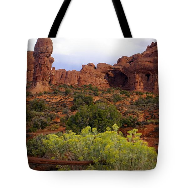 Arches Park 1 Tote Bag by Marty Koch