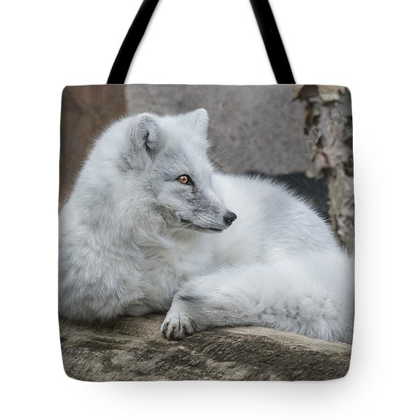 Arctic Fox Profile Tote Bag