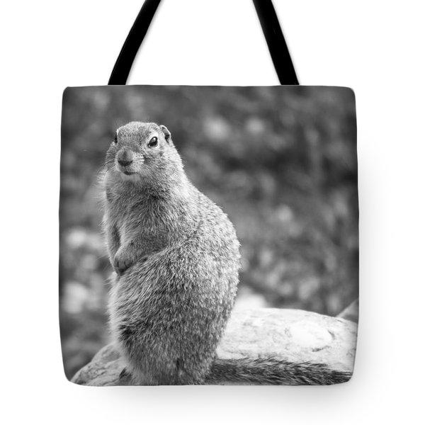 Arctic Ground Squirrel Tote Bag