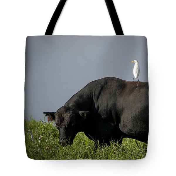 Tote Bag featuring the photograph Are We There Yet? by Windy Corduroy