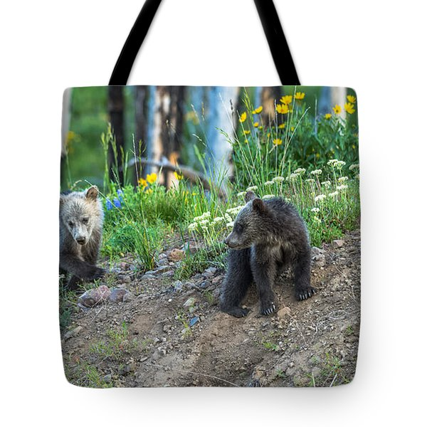Tote Bag featuring the photograph Are You Coming With Me by Yeates Photography