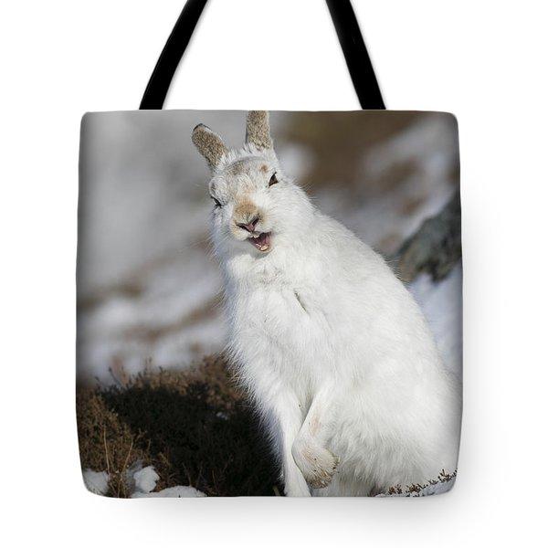 Are You Kidding? - Mountain Hare #14 Tote Bag