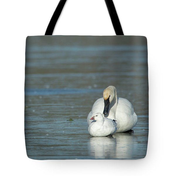 Are You My Mommy? Tote Bag