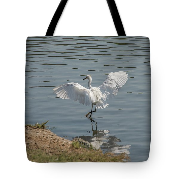 Are You Ready To Dance - Great Egret In Mtn View Ca Tote Bag