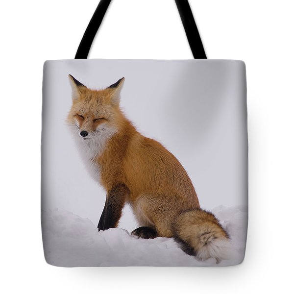 Are You Sleeping Tote Bag