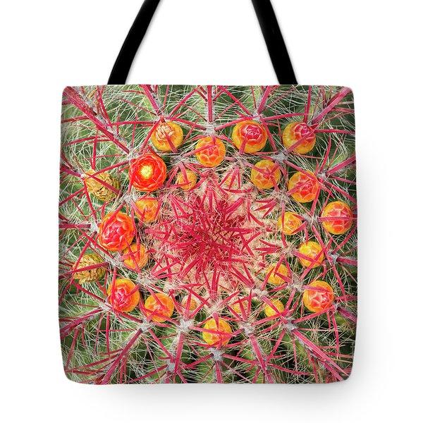 Arizona Barrel Cactus Tote Bag by Delphimages Photo Creations