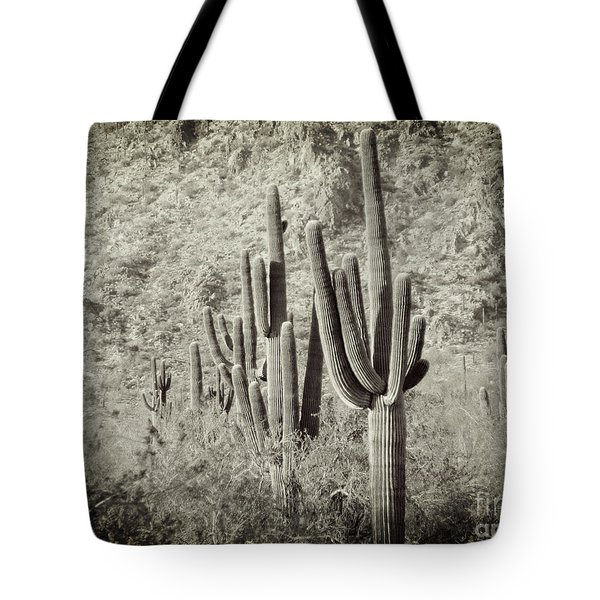 Arizona Desert 2 Tote Bag by Methune Hively