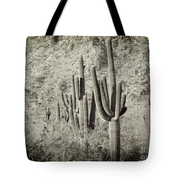 Arizona Desert 2 Tote Bag