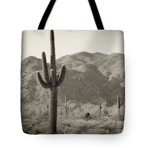 Arizona Desert Tote Bag by Methune Hively