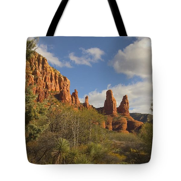 Arizona Outback 2 Tote Bag by Mike McGlothlen