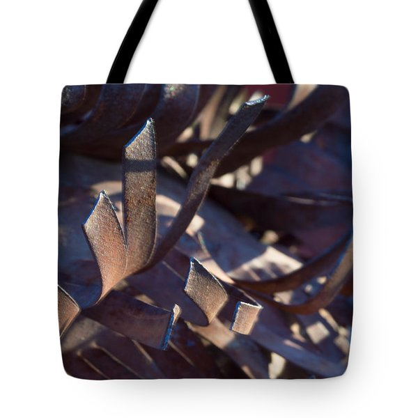 Tote Bag featuring the photograph Arizona Rust I by Carolina Liechtenstein