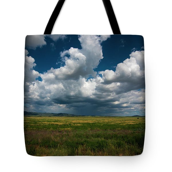 Tote Bag featuring the photograph Arizona Storm 2139  by David Haskett
