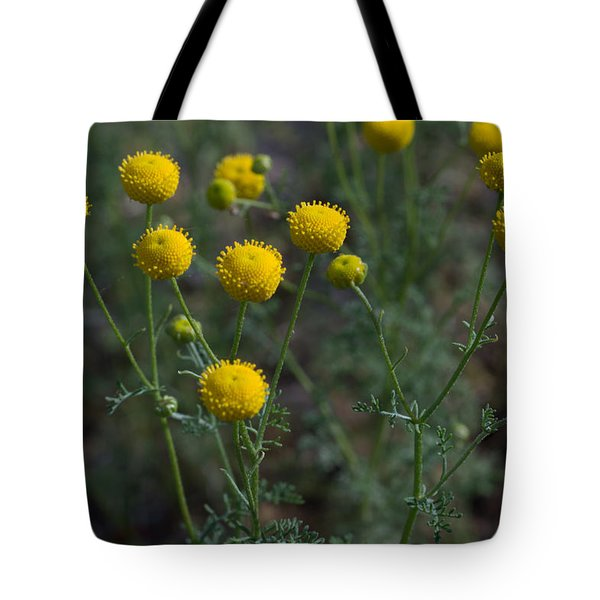 Tote Bag featuring the photograph Arizona Winter Bloom I by Carolina Liechtenstein