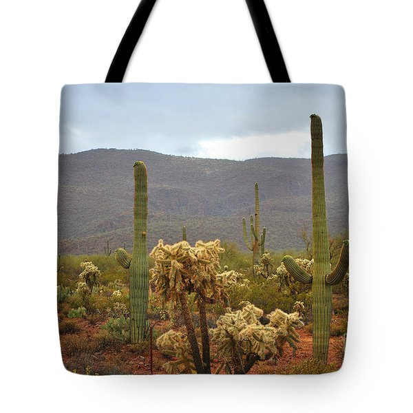 Arizona's Sonoran Desert  Tote Bag by Donna Greene
