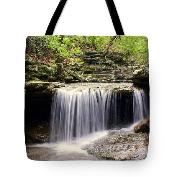 Arkansas Beauty Tote Bag by Marty Koch