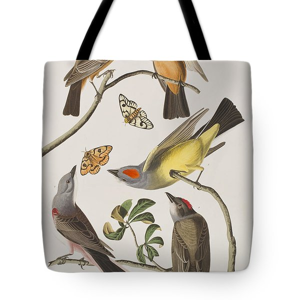 Arkansaw Flycatcher Swallow-tailed Flycatcher Says Flycatcher Tote Bag by John James Audubon