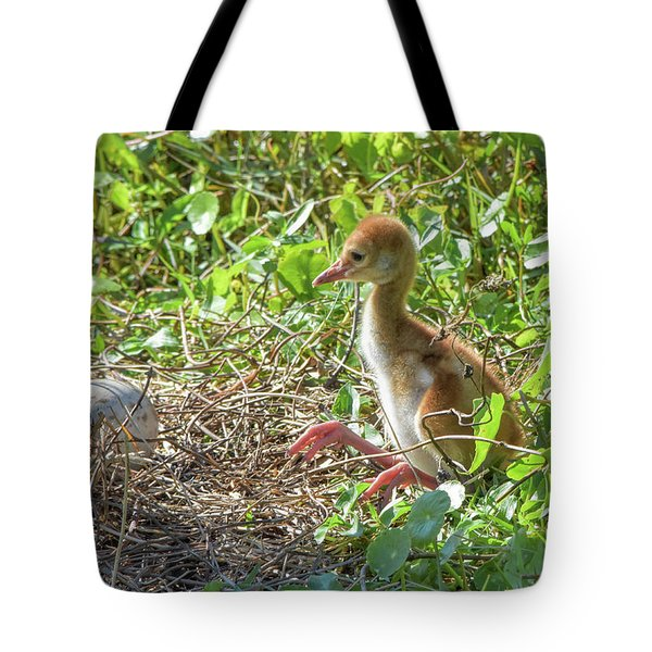 Are You Coming Out? Tote Bag