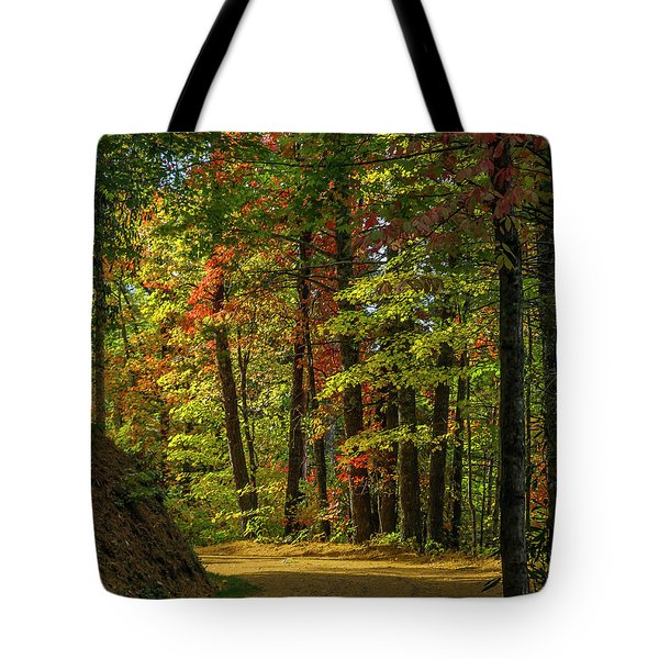 Around The Curve Tote Bag by Ulrich Burkhalter