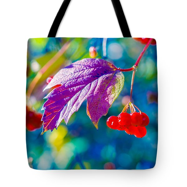 Tote Bag featuring the photograph Arrowwood Beauty by Alexander Senin