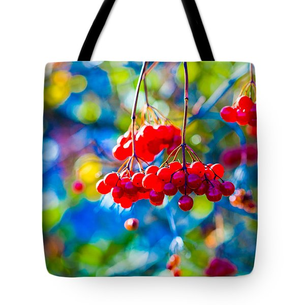 Tote Bag featuring the photograph Arrowwood Berries Abstract by Alexander Senin